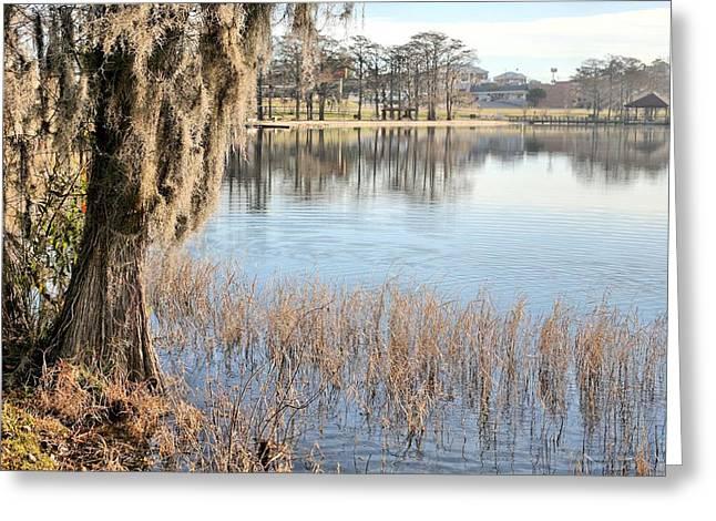 Florida Panhandle Greeting Cards - Florala Alabama Greeting Card by JC Findley