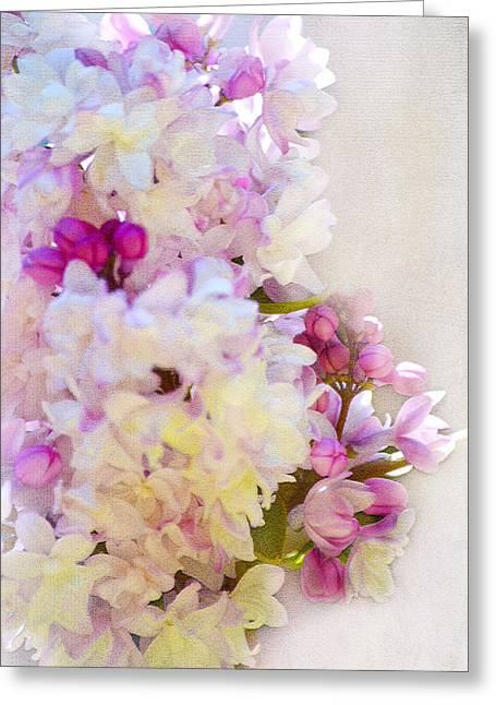 Lilac Greeting Cards - Florals Greeting Card by Camille Lopez