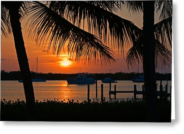 Boats At Dock Greeting Cards - Florida Keys Harbor Sunset Greeting Card by Ginger Wakem