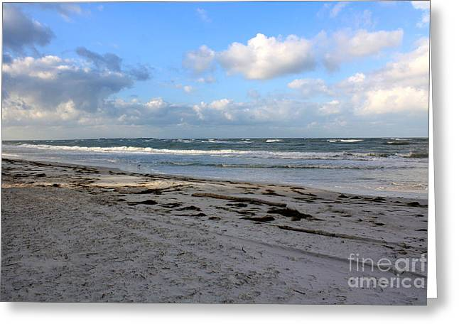 Outgoing Tide Greeting Cards - Florida Beach Day Greeting Card by Danielle Groenen