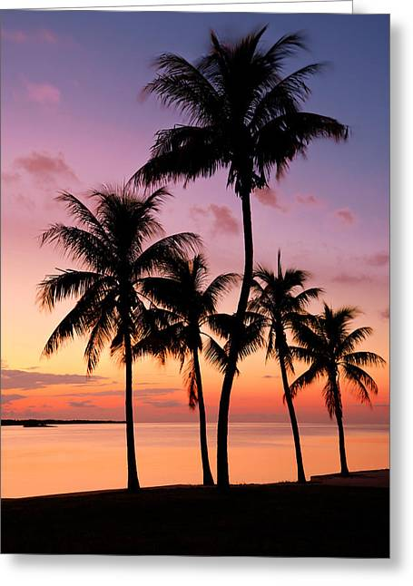 Ocean Landscape Greeting Cards - Florida Breeze Greeting Card by Chad Dutson