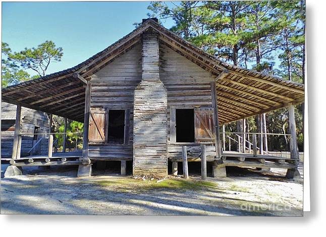 20th Greeting Cards - Florida Dogtrot Greeting Card by D Hackett