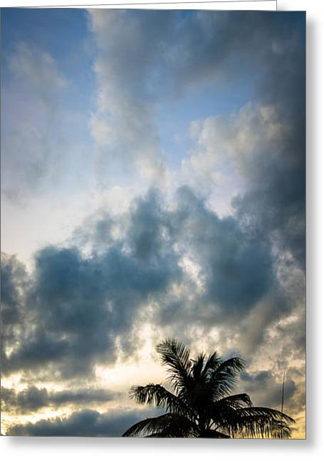St Petersburg Florida Greeting Cards - Florida Fire Greeting Card by Clay Townsend