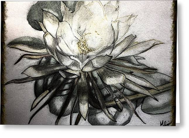 Florida Flowers Mixed Media Greeting Cards - Florida Flower 1 Greeting Card by Melissa  Stapley