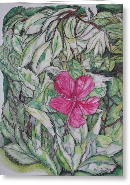 Florida Flowers Drawings Greeting Cards - Florida Hibiscus Greeting Card by Michael Garvey