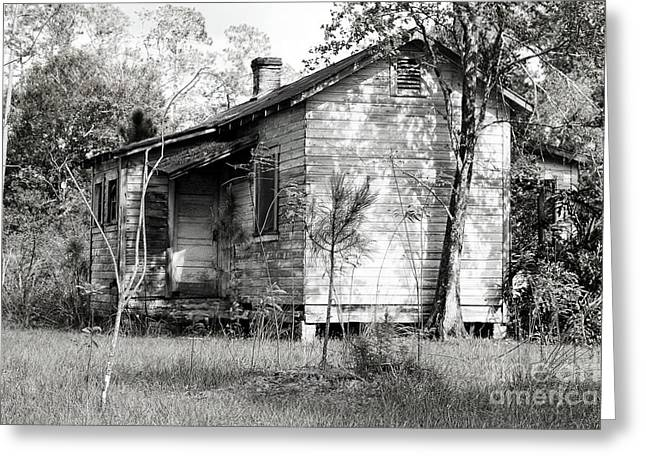 Florida House Greeting Cards - Florida Homestead  Greeting Card by Richard Mann