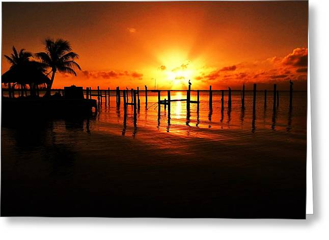 Tropical Oceans Greeting Cards - Florida Icons Greeting Card by Benjamin Yeager