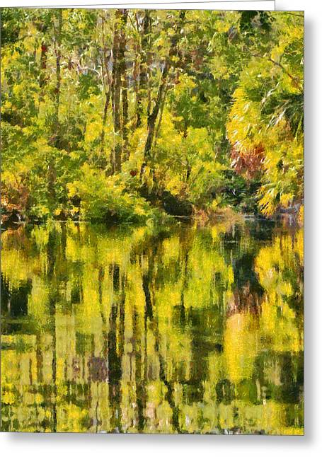 Peaceful Scene Greeting Cards - Florida Jungle Greeting Card by Christine Till