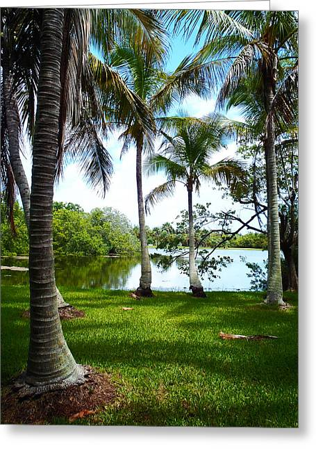 Captiva Greeting Cards - Florida Lake Greeting Card by Carey Chen