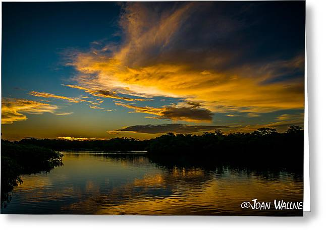 Englewood Greeting Cards - Florida Sunrise Greeting Card by Joan Wallner
