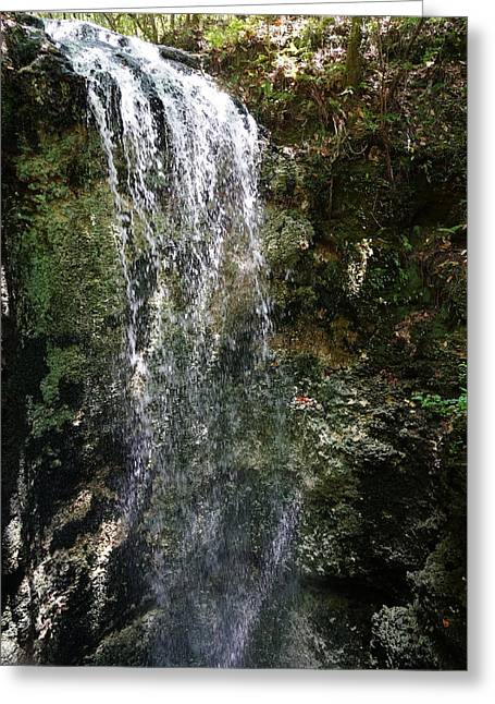 Sink Hole Greeting Cards - Tallest Florida Waterfall Greeting Card by Chuck Johnson