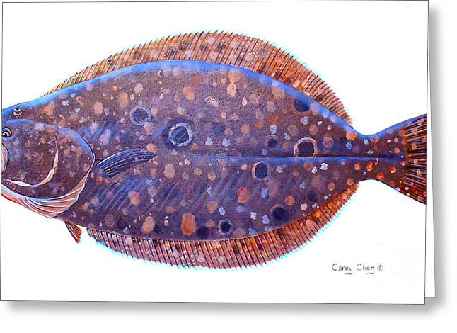 Mackerel Greeting Cards - Flounder Greeting Card by Carey Chen