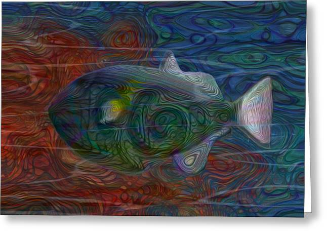 Sea Life Digital Art Greeting Cards - Flow 16 Greeting Card by Jack Zulli