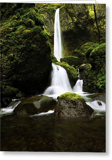 Moss Green Greeting Cards - Flow Greeting Card by Chad Dutson