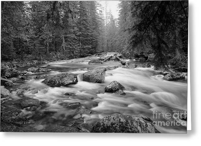 Gray Scale Greeting Cards - Flow Greeting Card by Idaho Scenic Images Linda Lantzy