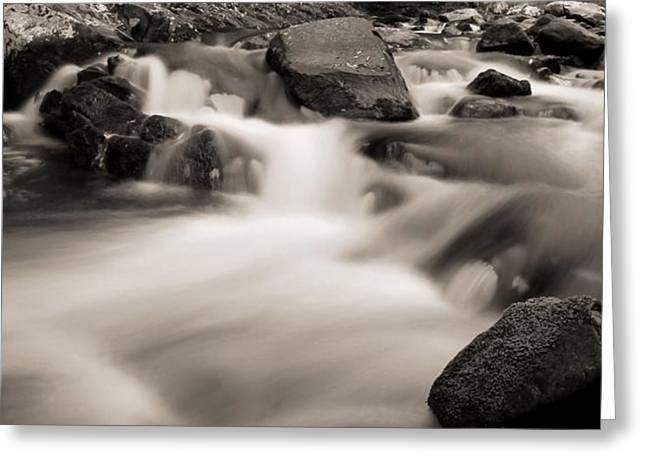 Flow Of Life Greeting Cards - Flow Of The Cascades In Tennessee Greeting Card by Dan Sproul