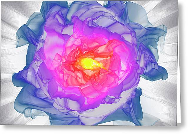 Algorithmic Abstract Greeting Cards - Flower 2013 Gallery 21 #22 Greeting Card by David Calloway