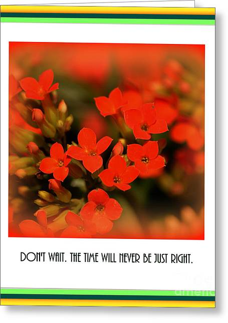 Close Focus Floral Greeting Cards - Flower and Time Quote Greeting Card by Susanne Van Hulst