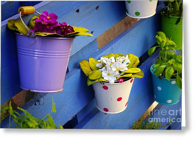 Flower Baskets Greeting Card by Carlos Caetano
