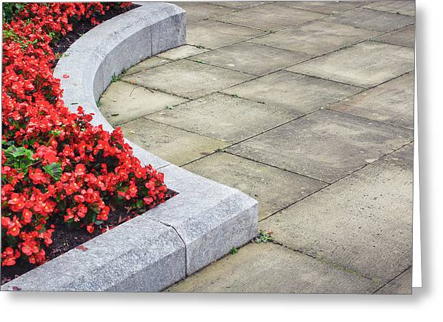 Border Photographs Greeting Cards - Flower bed Greeting Card by Tom Gowanlock