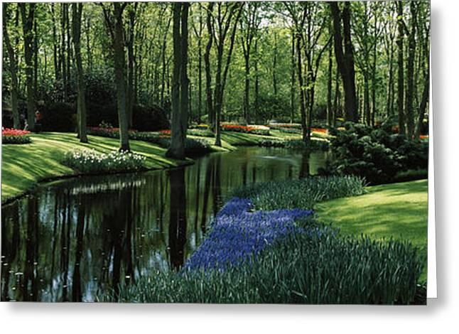 Garden Scene Photographs Greeting Cards - Flower Beds And Trees In Keukenhof Greeting Card by Panoramic Images