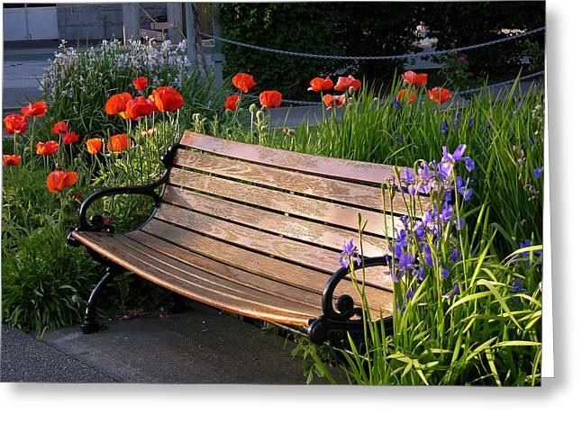 Photographs With Red. Greeting Cards - Flower Bench Greeting Card by Lynne Thibault