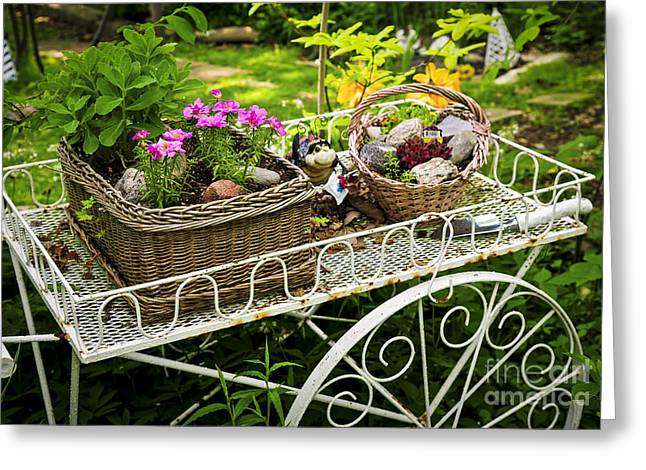 Lush Green Greeting Cards - Flower cart in garden Greeting Card by Elena Elisseeva
