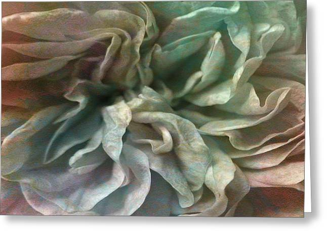 Fine Mixed Media Greeting Cards - Flower Dance - Abstract Art Greeting Card by Jaison Cianelli