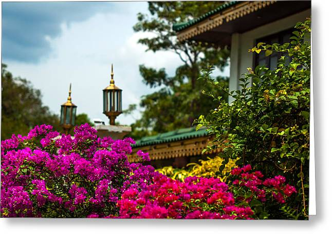Ceylon Greeting Cards - Flower Decoration of Golden Temple of Dambulla Greeting Card by Jenny Rainbow