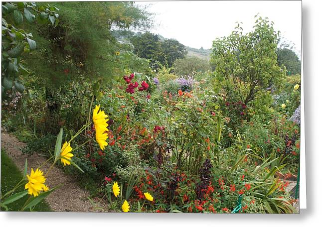Flower Garden II Greeting Card by Kristine Bogdanovich
