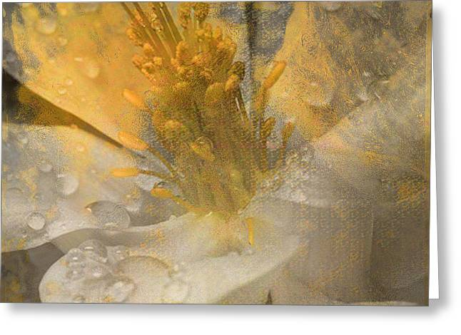 Flower III Greeting Card by Yanni Theodorou