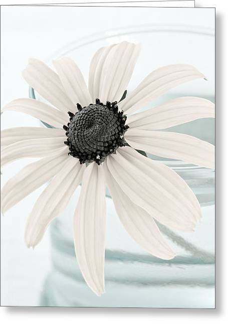 Pale Colors Greeting Cards - Flower In A Vase Still Life Greeting Card by Frank Tschakert