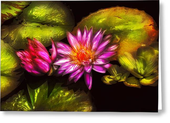 Lilly Pads Greeting Cards - Flower - Lotus - Soaking in Sunlight Greeting Card by Mike Savad