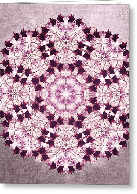 Transformations Digital Greeting Cards - Flower Mandala pink Greeting Card by Filippo B