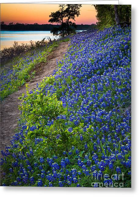 Bluebonnet Landscape Greeting Cards - Flower Mound Greeting Card by Inge Johnsson