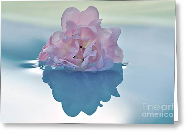 Kaye Menner Floral Greeting Cards - Flower on Water Greeting Card by Kaye Menner