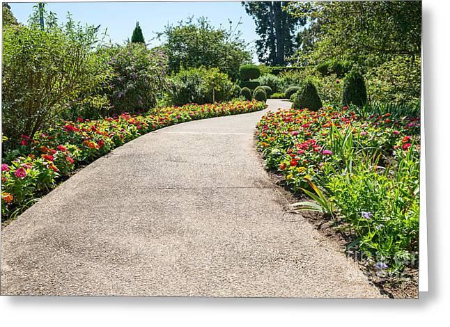 Enjoying Greeting Cards - Flower Path Greeting Card by Jamie Pham