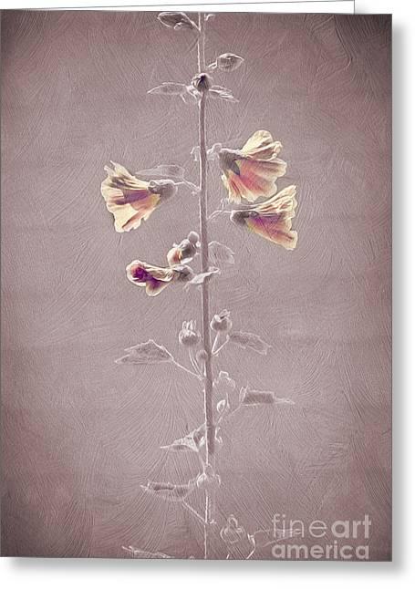 Flower Plant Greeting Card by Svetlana Sewell