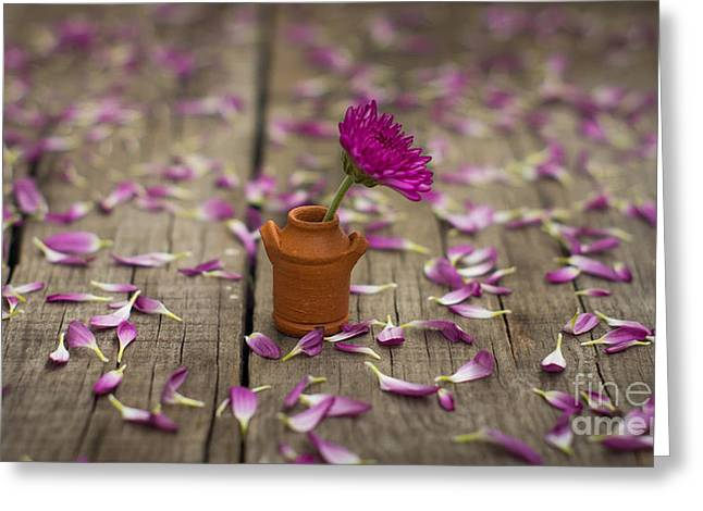 Terracotta Greeting Cards - Flower Pot Greeting Card by Aged Pixel