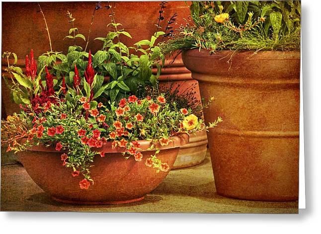 Flower Pots Greeting Card by Nikolyn McDonald
