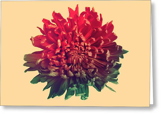 Flourished Greeting Cards - Flower prints Greeting Card by Budi Satria Kwan
