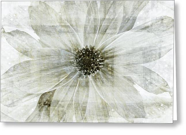 Flower Reflection Greeting Card by Frank Tschakert