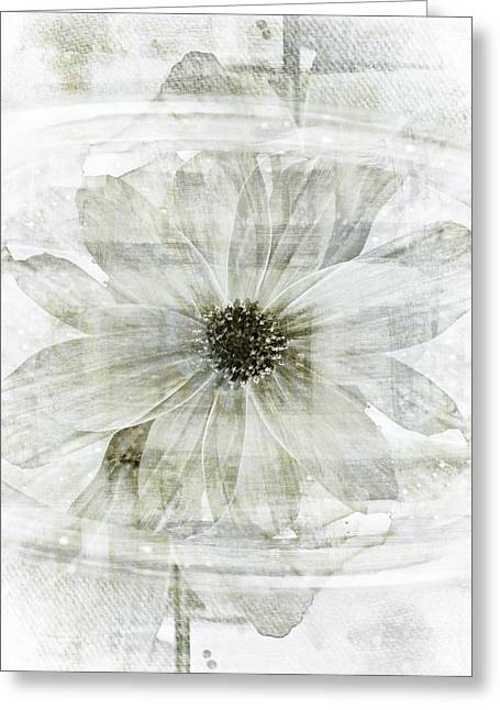 Floral Still Life Mixed Media Greeting Cards - Flower Reflection Greeting Card by Frank Tschakert
