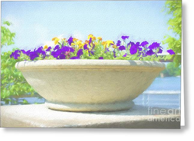 Concrete Planter Greeting Cards - Flower - River View Delight - Luther Fine Art Greeting Card by Luther  \ Fine Art