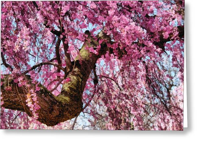 Pink Flower Branch Greeting Cards - Flower - Sakura - Finally its Spring Greeting Card by Mike Savad