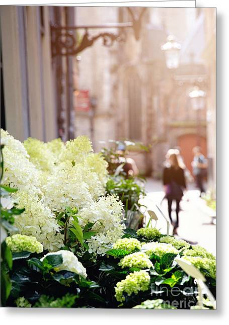 Flower Stall In Sunlight Greeting Card by Jane Rix