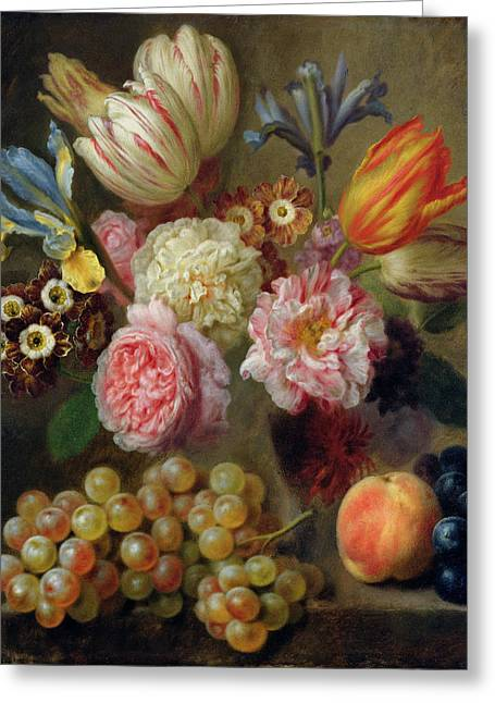Flower Study  Greeting Card by Balthasar Denner