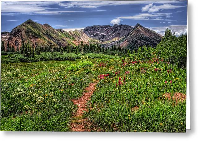 Mancos Greeting Cards - Flower Walk Greeting Card by Priscilla Burgers