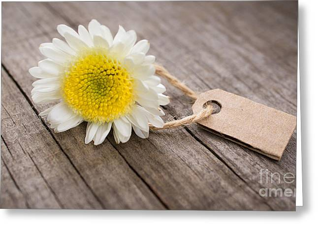 Label Greeting Cards - Flower with Sales Tag Greeting Card by Aged Pixel
