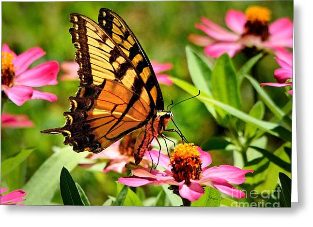 Nava Jo Thompson Greeting Cards - Flower With Wings Greeting Card by Nava  Thompson